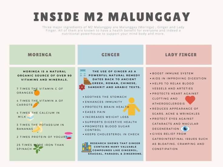 m2malunggay